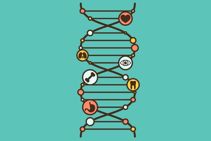 8 Common DNA Questions and Answers